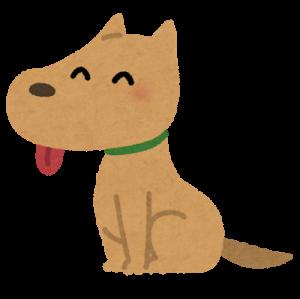大久保佳代子の犬のパコ美の意味が・・昔どこの会社でクレーム処理?